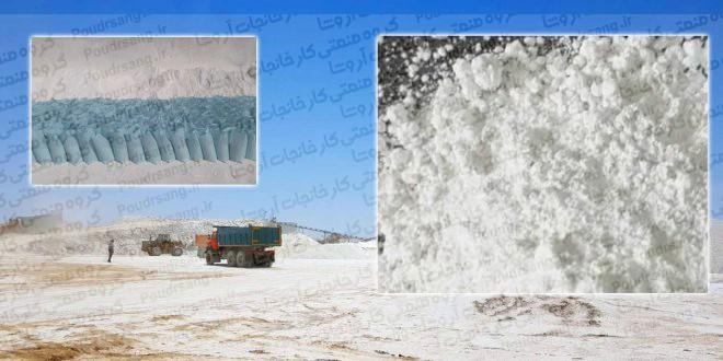 صادرات پودر نمارومی کرمان